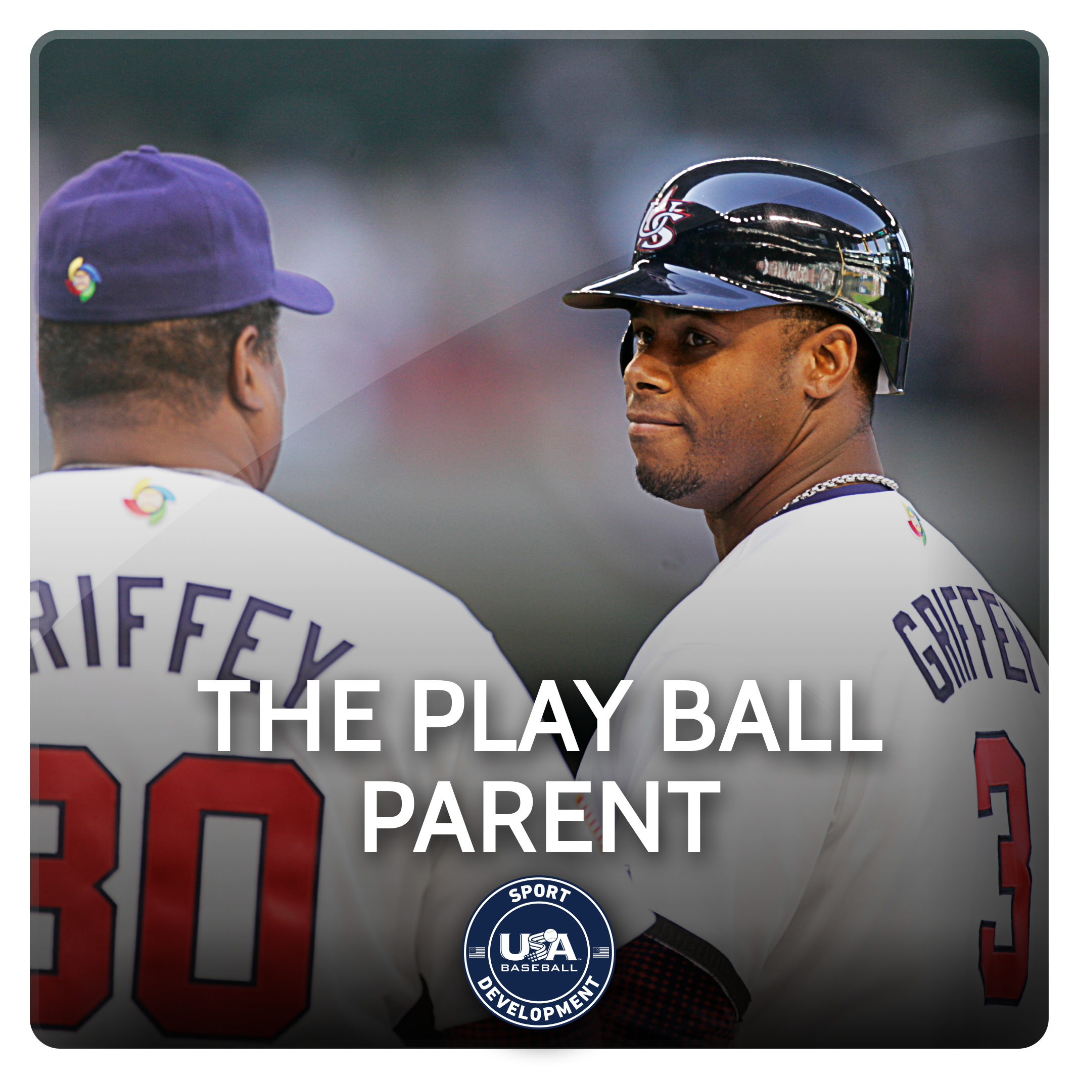 The Play Ball Parent